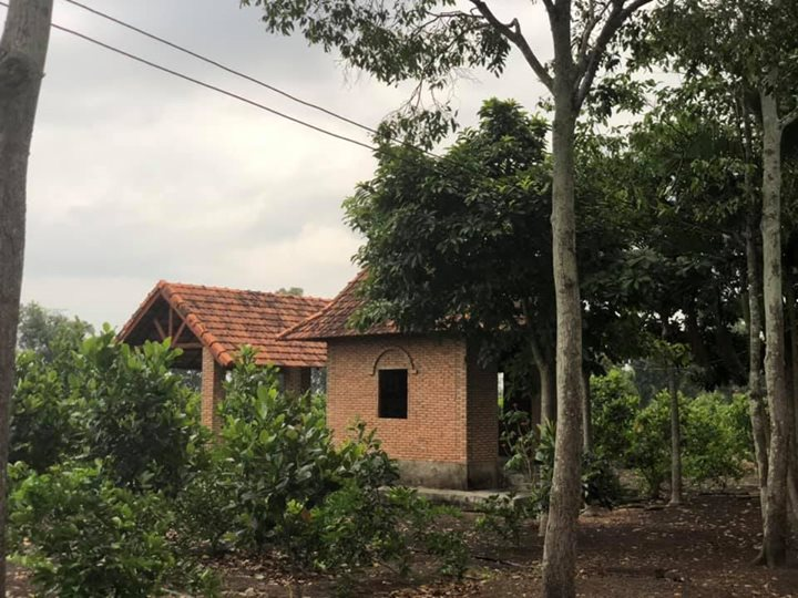 Bán Trang Trại Rộng 5.5 ha Tại Bảo Quang TP Mới Long Khánh