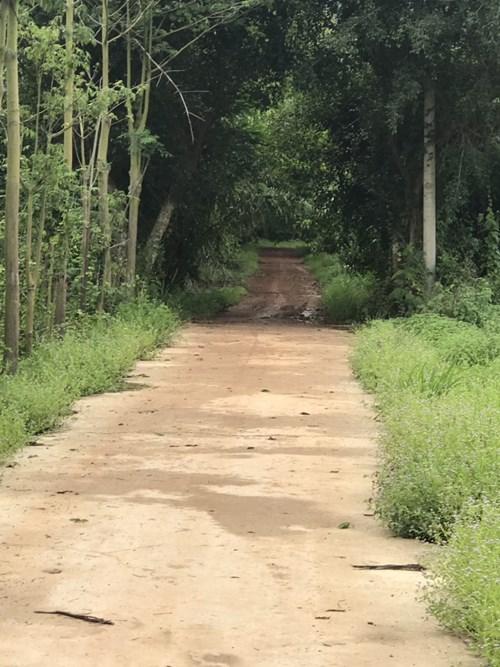 7 ha Đất Xã Suối Cát Huyện Xuân Lộc, Đồng Nai