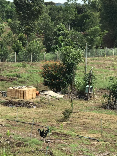 Bán Đất Xã Bảo Bình, Huyện Cẩm Mỹ, Tỉnh Đồng Nai