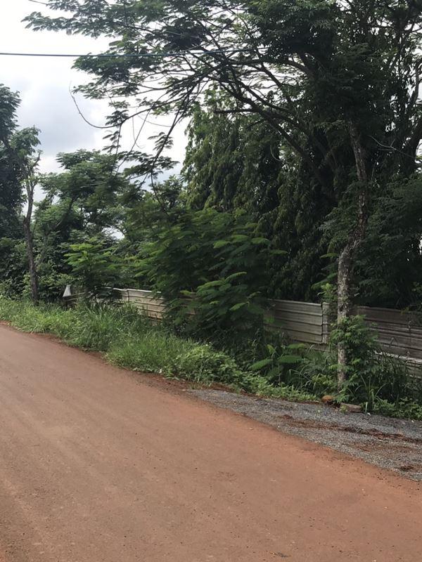 Bán Đất Xã Xuân Bảo, Huyện Cẩm Mỹ.