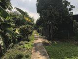 Bán 5 sào vườn trái cây nghỉ dưỡng tại suối rết