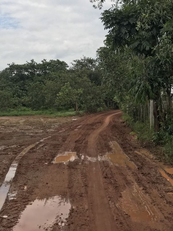 Bán 2.5 Sào Đất Xã Xuân Hiệp, Huyện Xuân Lộc, Đồng Nai