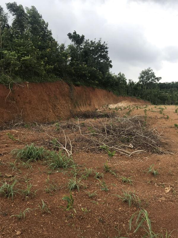 Bán 1 Mẫu Đất Tại Xã Suối Cao, Huyện Xuân Lộc